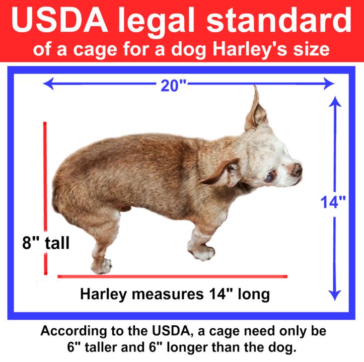 Harley USDA