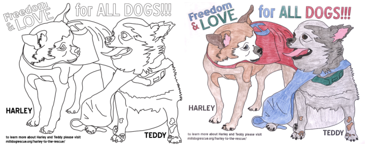 harley-teddy-coloring-page
