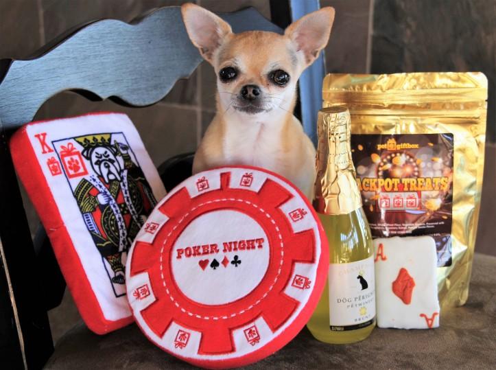 olive-pet-gift-box-paws-vegas-1