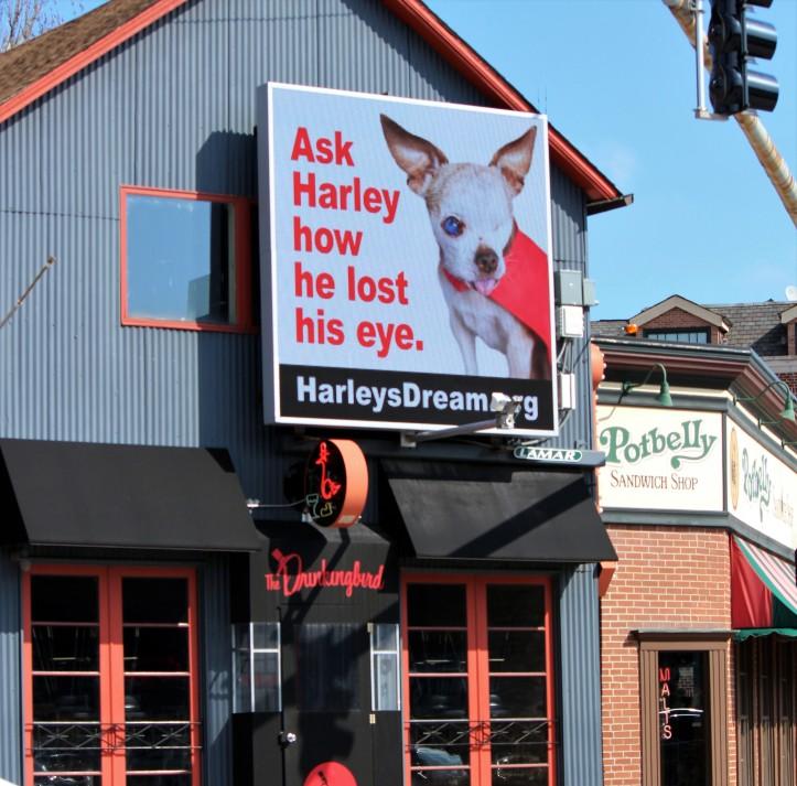 webster-clybourn-billboard-chicago