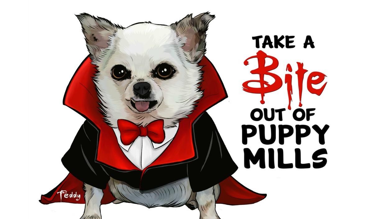take a bite out of puppy mills   u2013 harley u0026 39 s dream