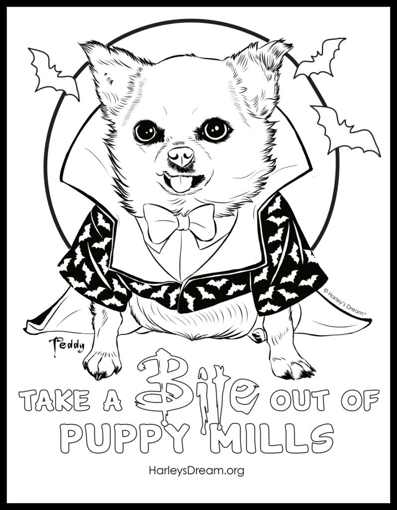 take a bite out of puppy mills u2013 harley u0027s dream