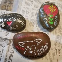 LLH Rocks (7)
